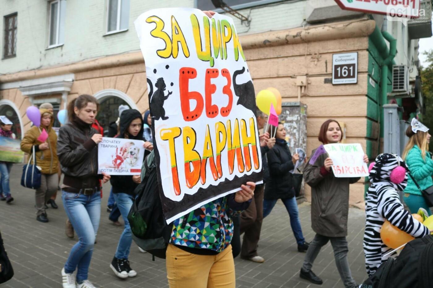 В Запорожье прошел марш за права животных, - ФОТОРЕПОРТАЖ, фото-28