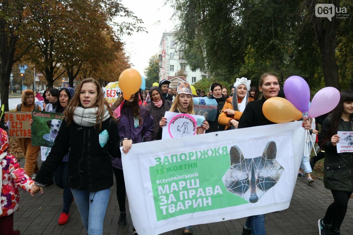 В Запорожье прошел марш за права животных, - ФОТОРЕПОРТАЖ, фото-29