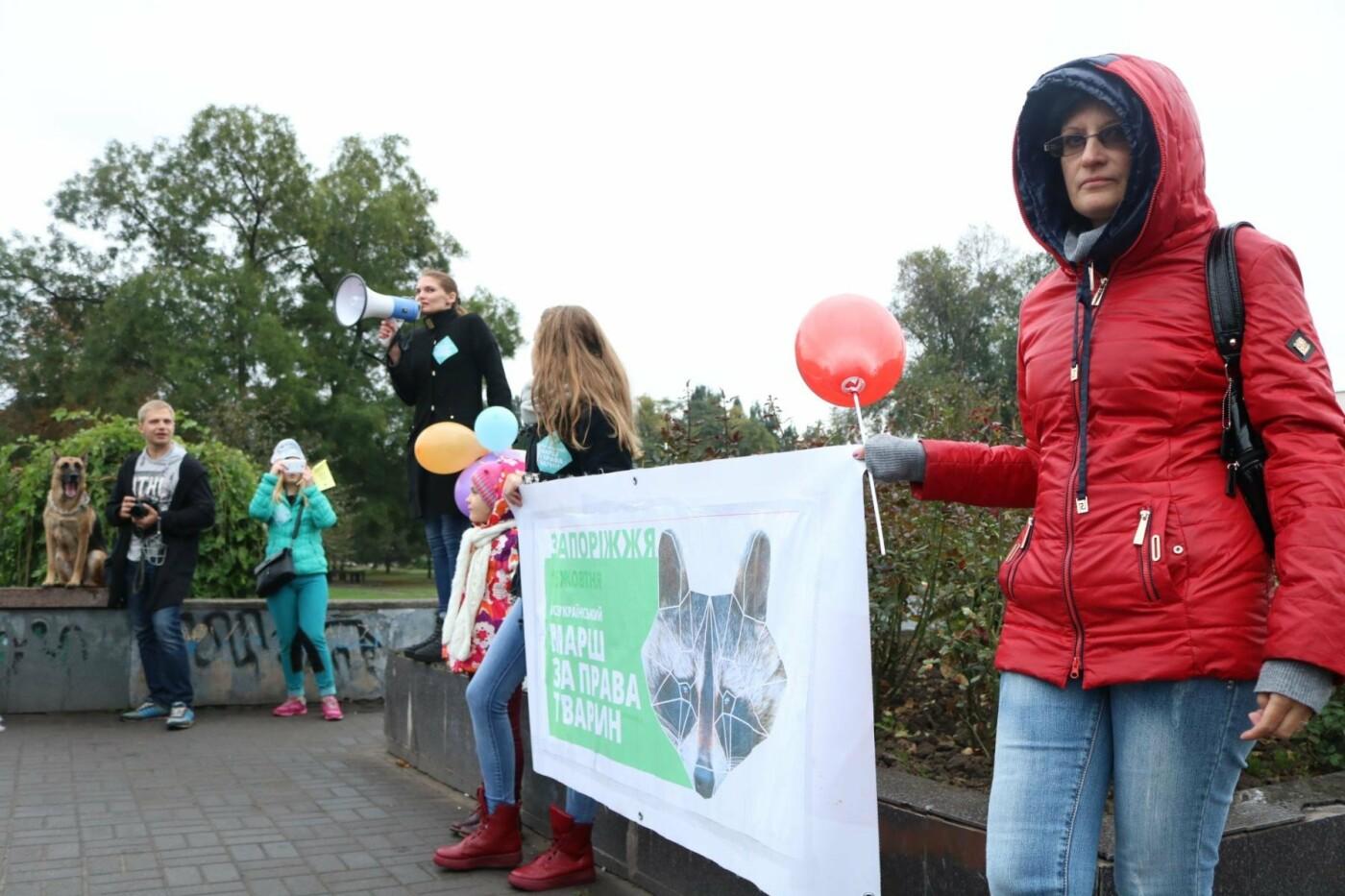 В Запорожье прошел марш за права животных, - ФОТОРЕПОРТАЖ, фото-26