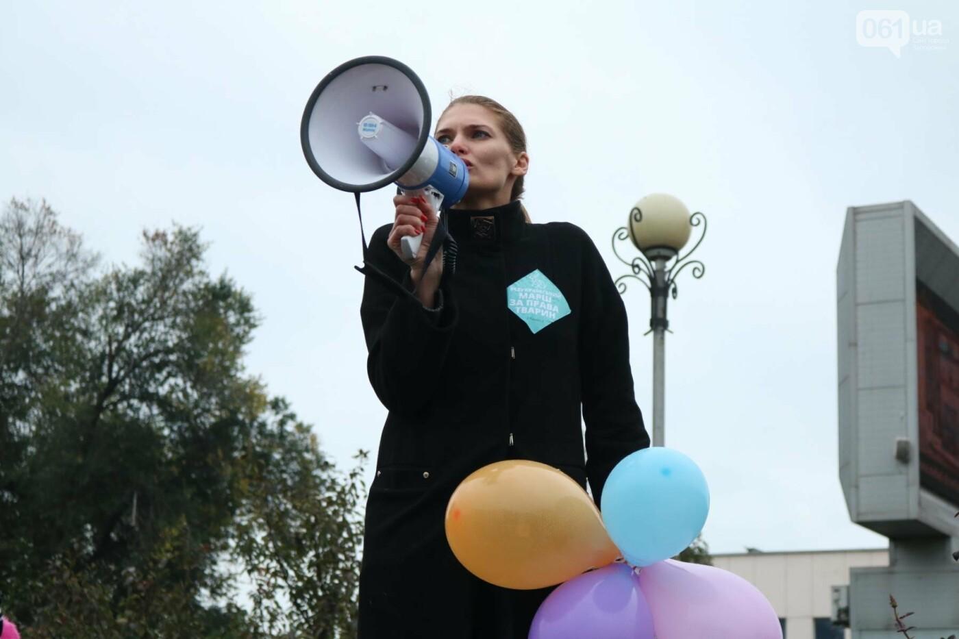В Запорожье прошел марш за права животных, - ФОТОРЕПОРТАЖ, фото-2