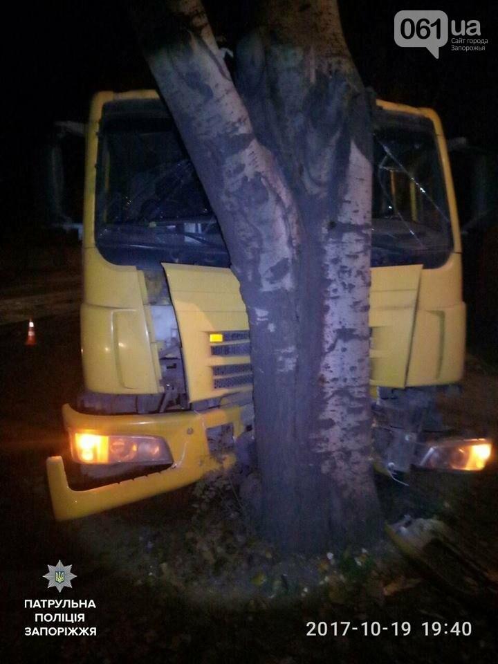 В Запорожье грузовик протаранил дерево, - ФОТО, фото-1