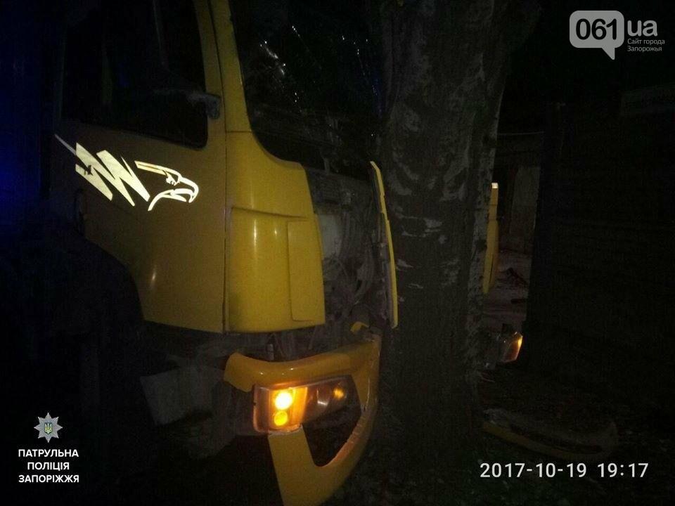 В Запорожье грузовик протаранил дерево, - ФОТО, фото-2