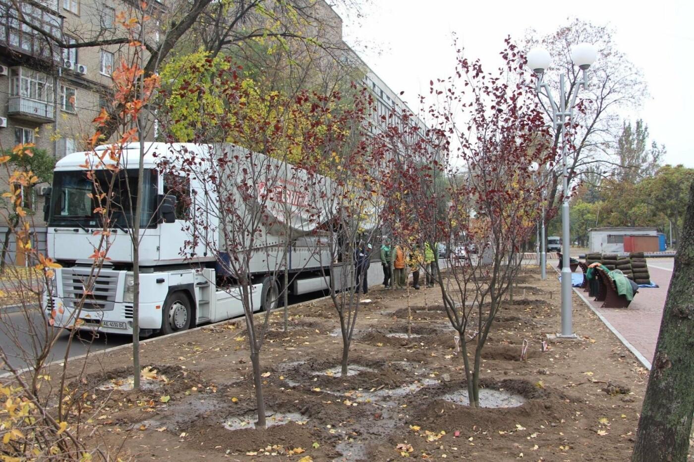 На проспекте Маяковского посадят 100 деревьев и более 700 кустарников, - ФОТО , фото-1