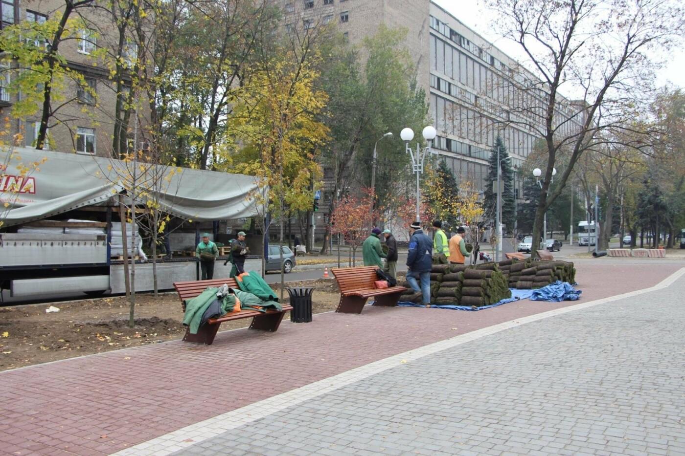 На проспекте Маяковского посадят 100 деревьев и более 700 кустарников, - ФОТО , фото-3