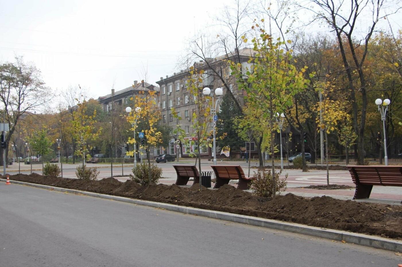 На проспекте Маяковского посадят 100 деревьев и более 700 кустарников, - ФОТО , фото-6