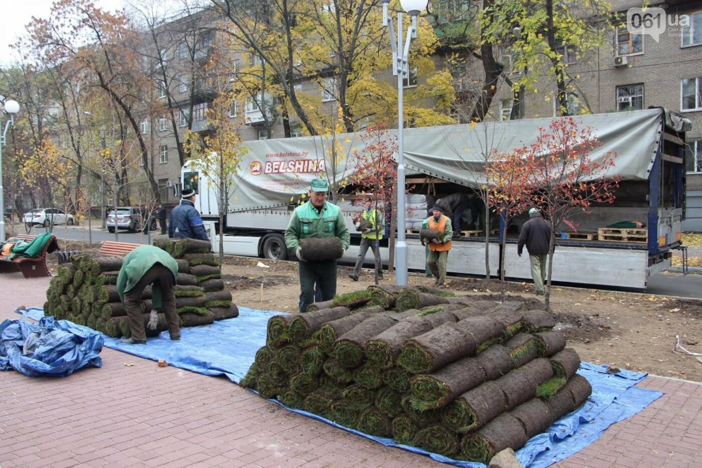 На проспекте Маяковского посадят 100 деревьев и более 700 кустарников, - ФОТО , фото-2