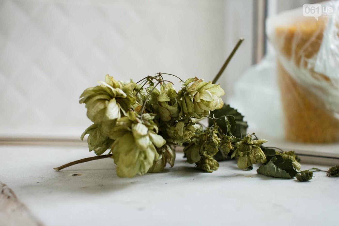 """""""Существует только два вида пива"""": история запорожца, который отказался от престижной должности ради работы пивоваром, фото-11"""