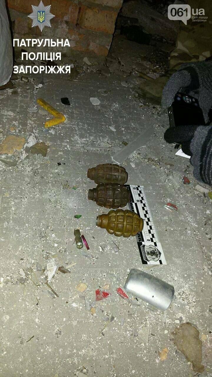 В Запорожье на Бабурке нашли пакет с гранатами, – ФОТО, фото-3