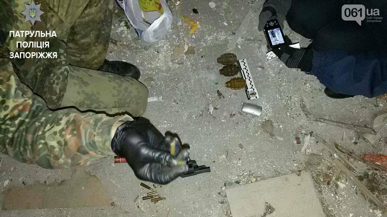 В Запорожье на Бабурке нашли пакет с гранатами, – ФОТО, фото-2