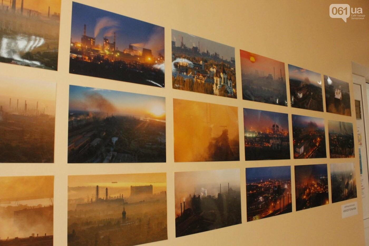 """Организаторы фотовыставки """"Экоцид по-запорожски"""" планируют провести её за границей, - ФОТОРЕПОРТАЖ, фото-11"""