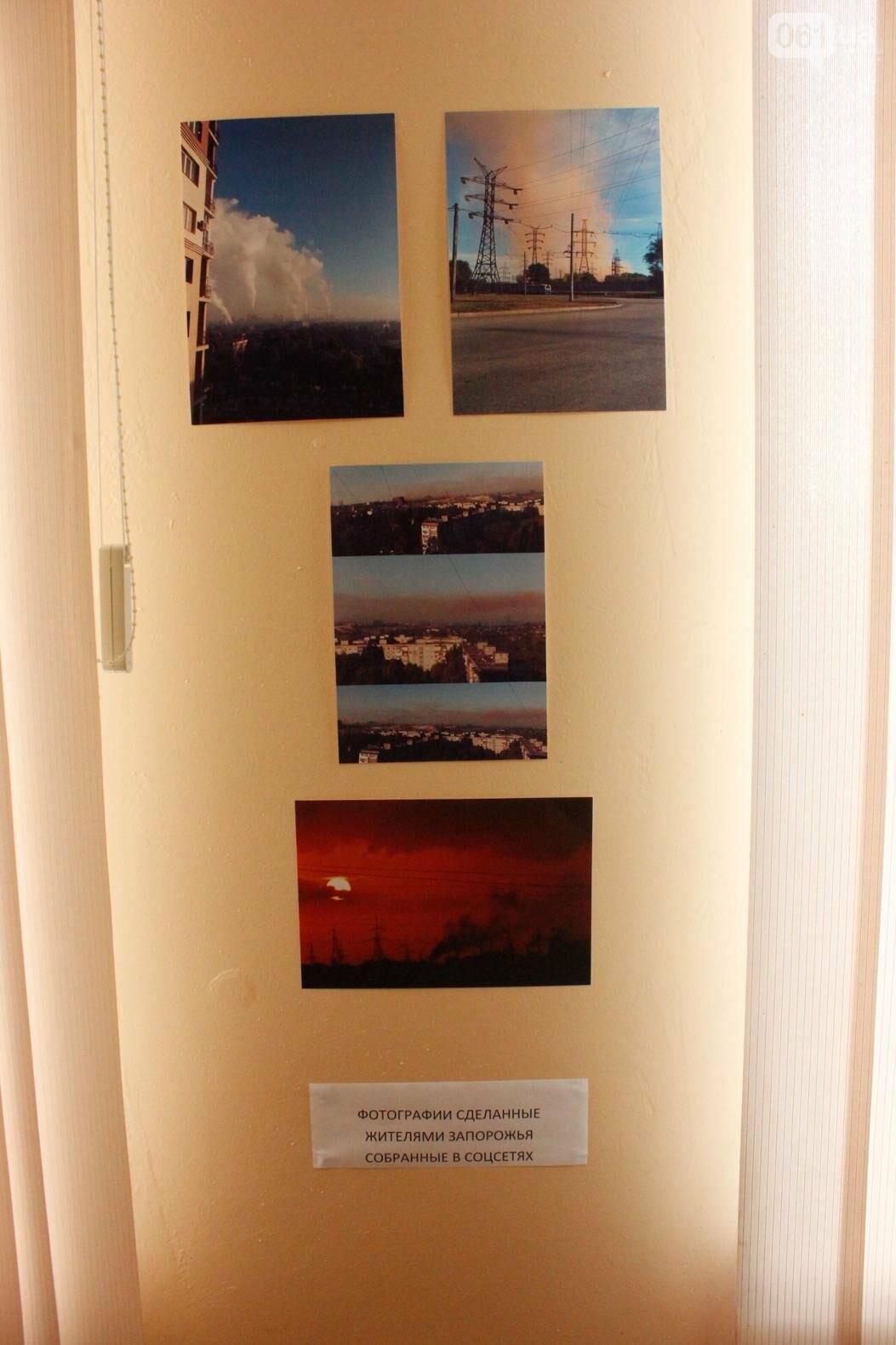 """Организаторы фотовыставки """"Экоцид по-запорожски"""" планируют провести её за границей, - ФОТОРЕПОРТАЖ, фото-19"""