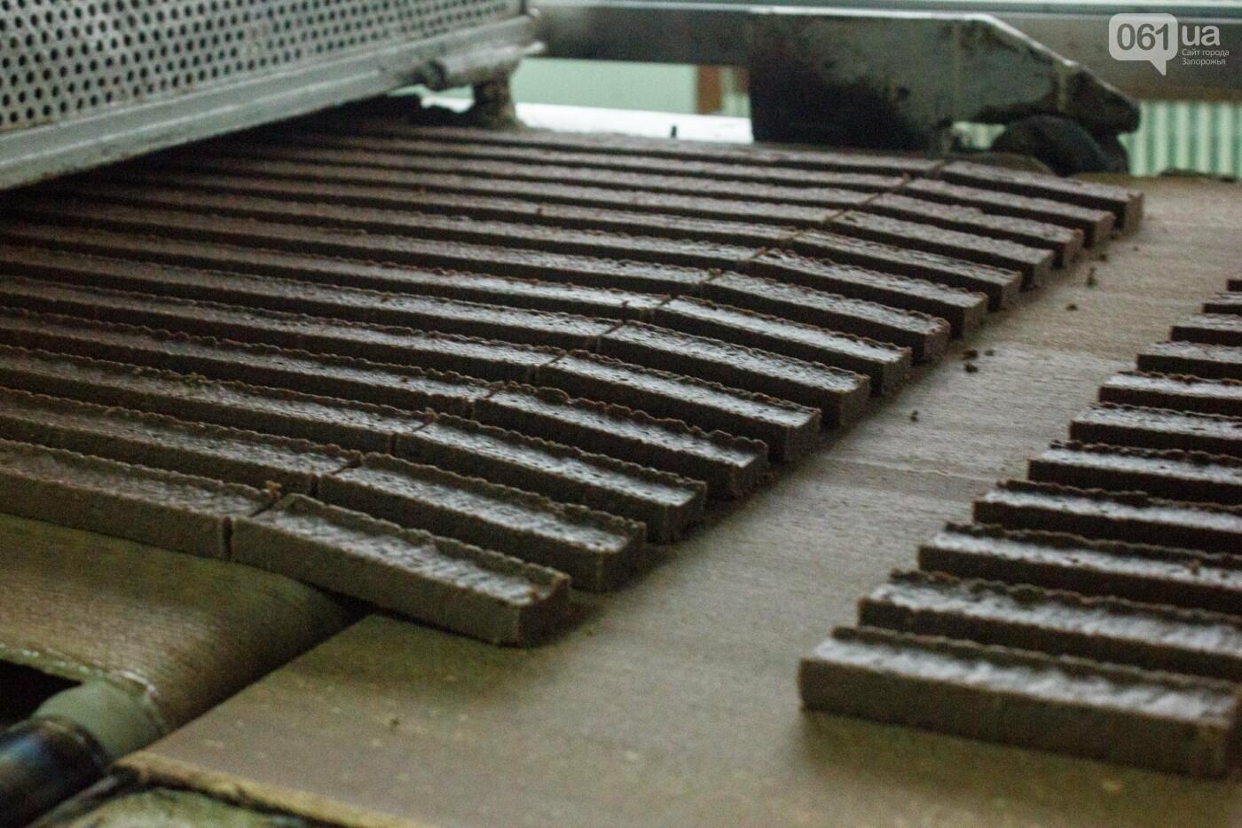 Как в Запорожье делают конфеты: экскурсия на кондитерскую фабрику, – ФОТОРЕПОРТАЖ, фото-3
