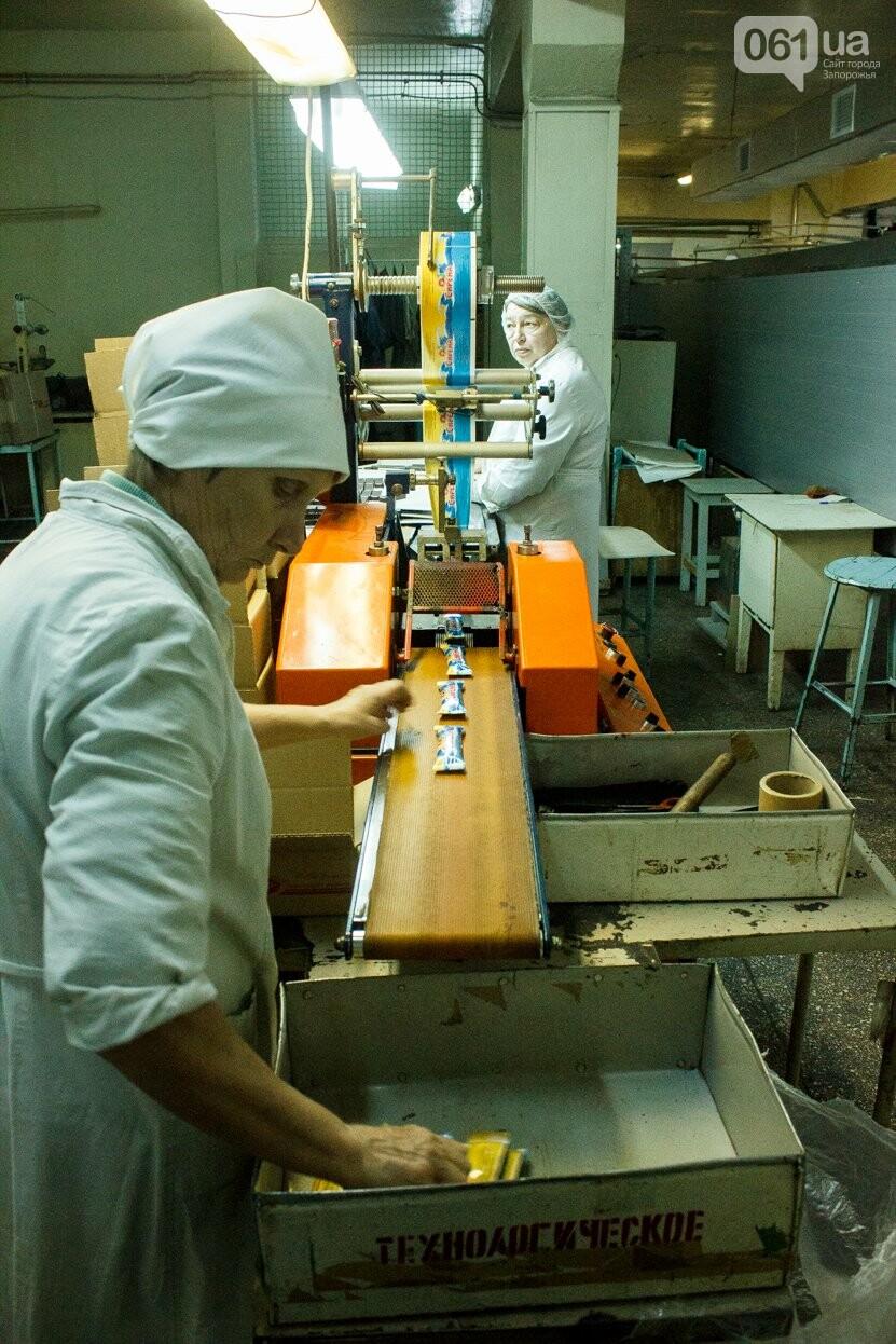 Как в Запорожье делают конфеты: экскурсия на кондитерскую фабрику, – ФОТОРЕПОРТАЖ, фото-11