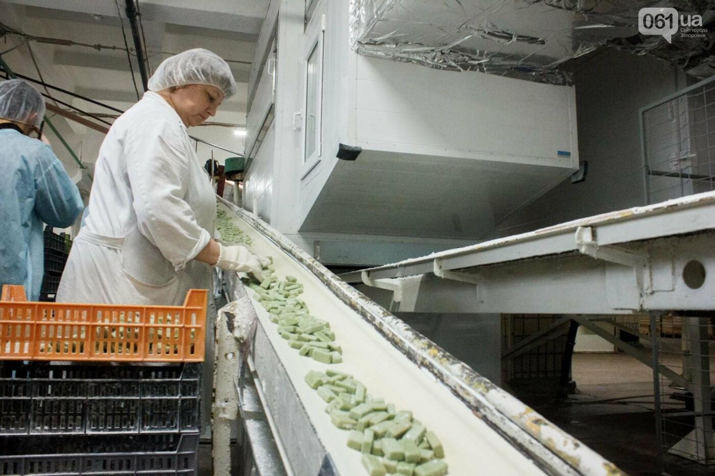 Как в Запорожье делают конфеты: экскурсия на кондитерскую фабрику, – ФОТОРЕПОРТАЖ, фото-21