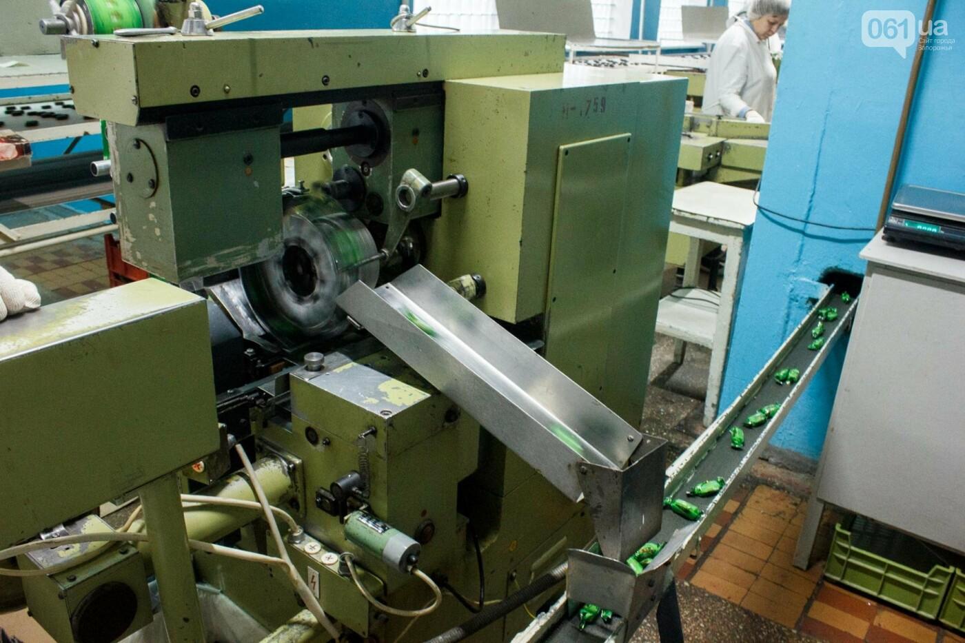 Как в Запорожье делают конфеты: экскурсия на кондитерскую фабрику, – ФОТОРЕПОРТАЖ, фото-30