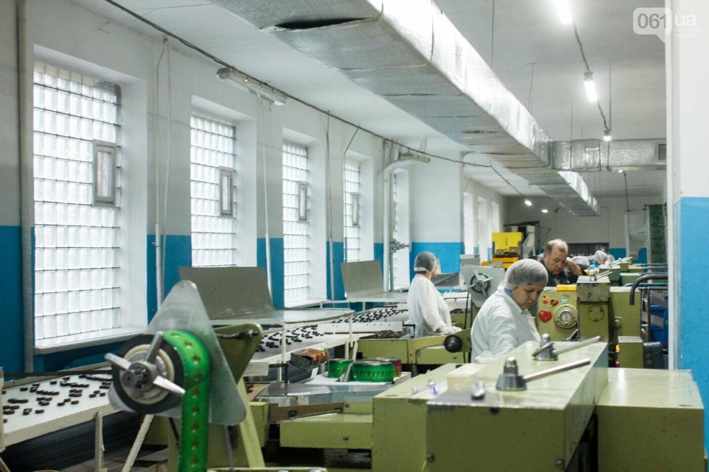 Как в Запорожье делают конфеты: экскурсия на кондитерскую фабрику, – ФОТОРЕПОРТАЖ, фото-28