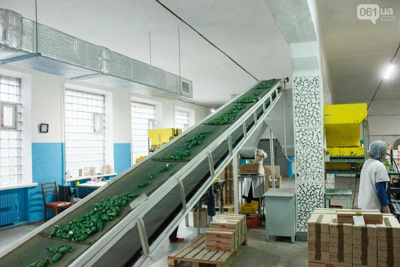 Как в Запорожье делают конфеты: экскурсия на кондитерскую фабрику, – ФОТОРЕПОРТАЖ, фото-32