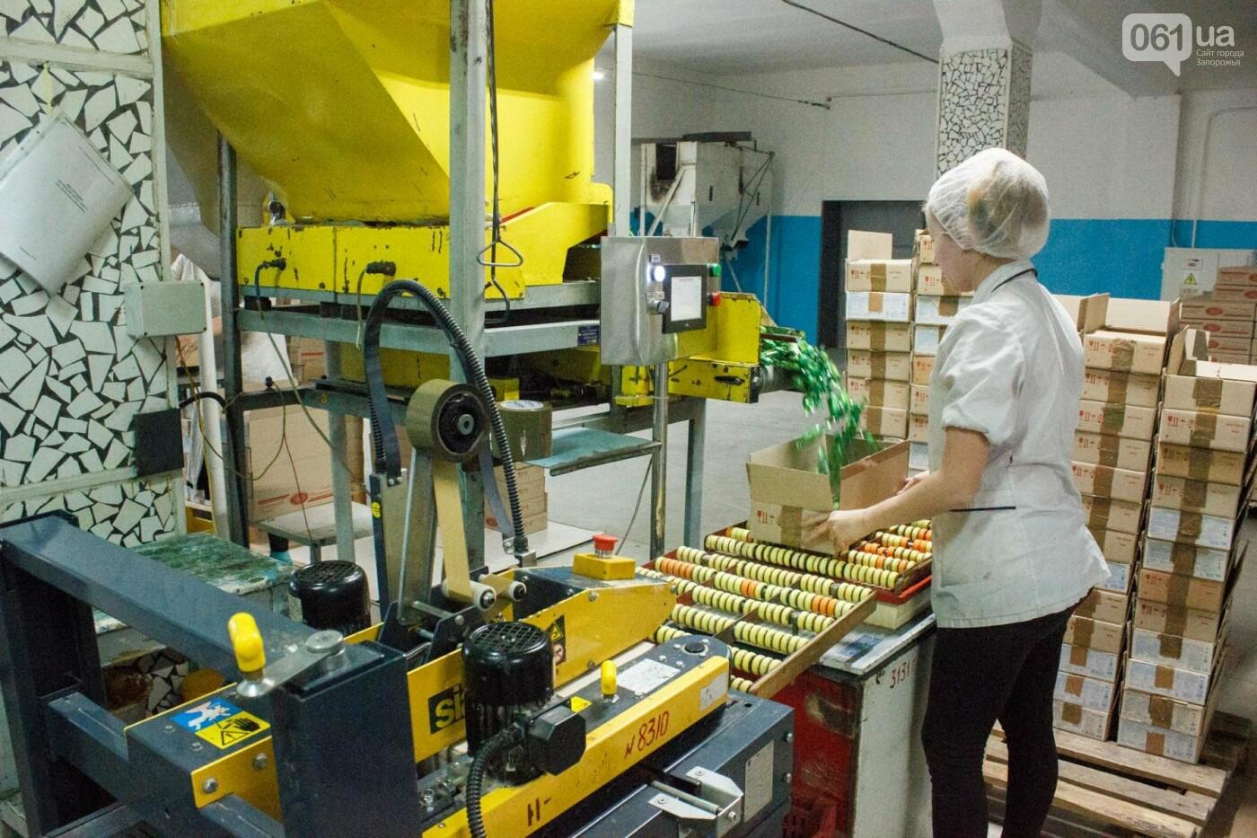 Как в Запорожье делают конфеты: экскурсия на кондитерскую фабрику, – ФОТОРЕПОРТАЖ, фото-33