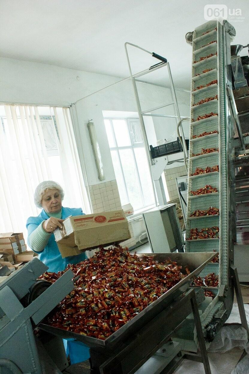 Как в Запорожье делают конфеты: экскурсия на кондитерскую фабрику, – ФОТОРЕПОРТАЖ, фото-34