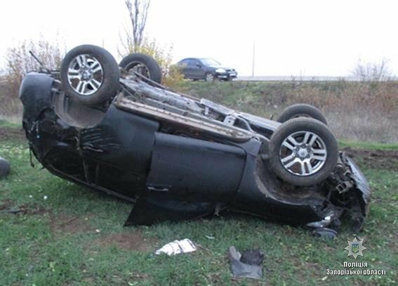 В Запорожской области авто вылетело на обочину и перевернулось: водитель погиб, - ФОТО, фото-1
