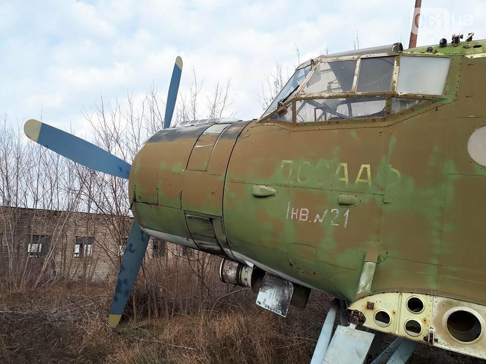 Разбитые самолеты и трава по колено: как сейчас выглядит аэродром в Широком, - ФОТО , фото-7
