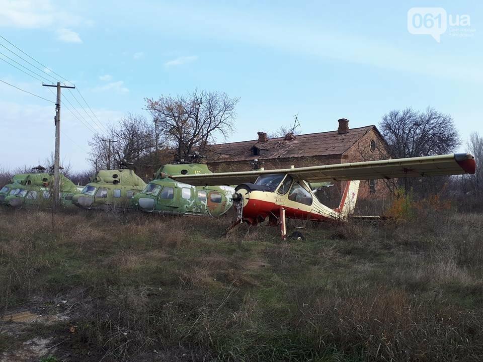 Разбитые самолеты и трава по колено: как сейчас выглядит аэродром в Широком, - ФОТО , фото-6