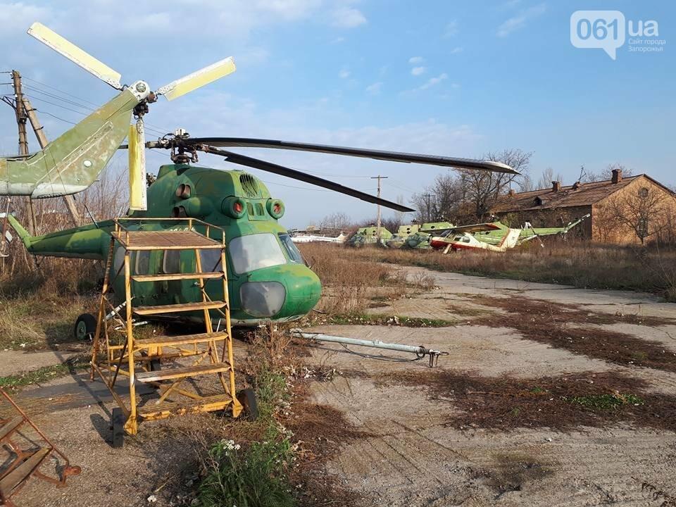 Разбитые самолеты и трава по колено: как сейчас выглядит аэродром в Широком, - ФОТО , фото-20
