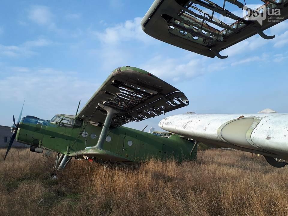 Разбитые самолеты и трава по колено: как сейчас выглядит аэродром в Широком, - ФОТО , фото-9