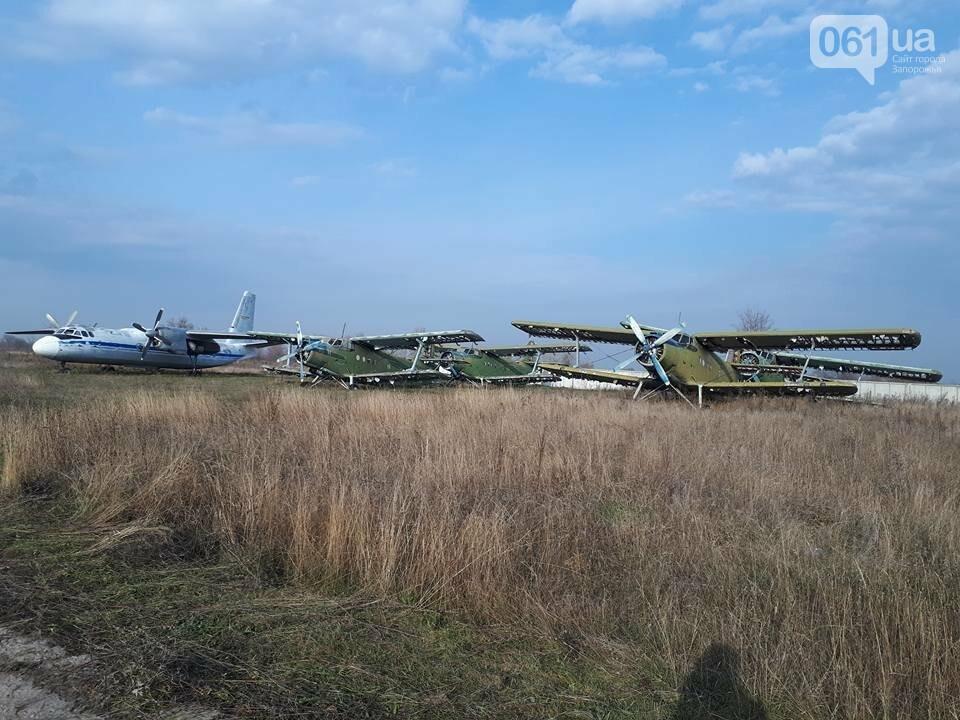 Разбитые самолеты и трава по колено: как сейчас выглядит аэродром в Широком, - ФОТО , фото-5