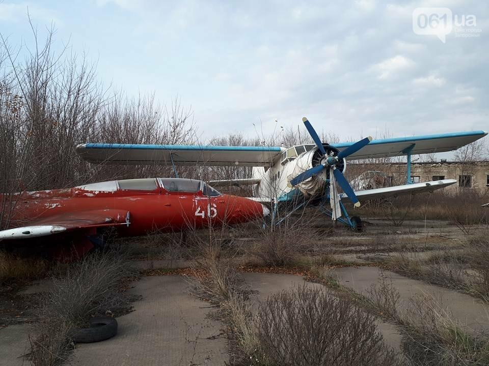 Разбитые самолеты и трава по колено: как сейчас выглядит аэродром в Широком, - ФОТО , фото-2