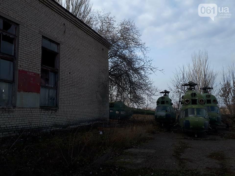 Разбитые самолеты и трава по колено: как сейчас выглядит аэродром в Широком, - ФОТО , фото-4
