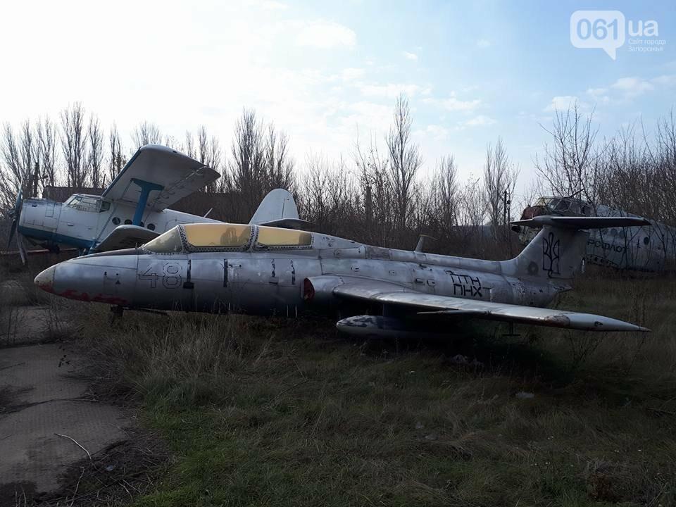 Разбитые самолеты и трава по колено: как сейчас выглядит аэродром в Широком, - ФОТО , фото-13