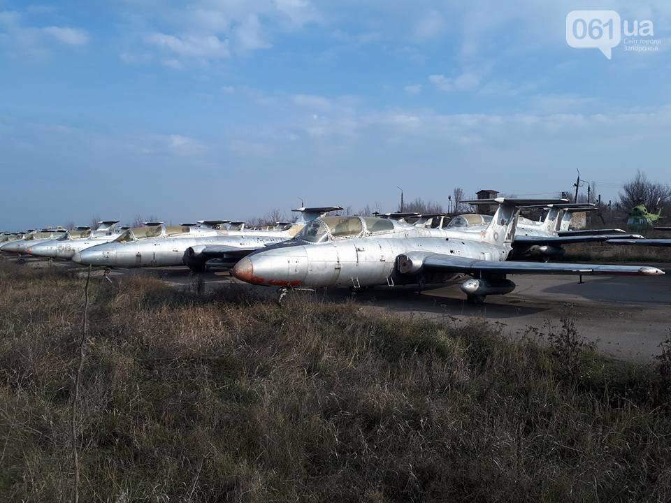 Разбитые самолеты и трава по колено: как сейчас выглядит аэродром в Широком, - ФОТО , фото-10