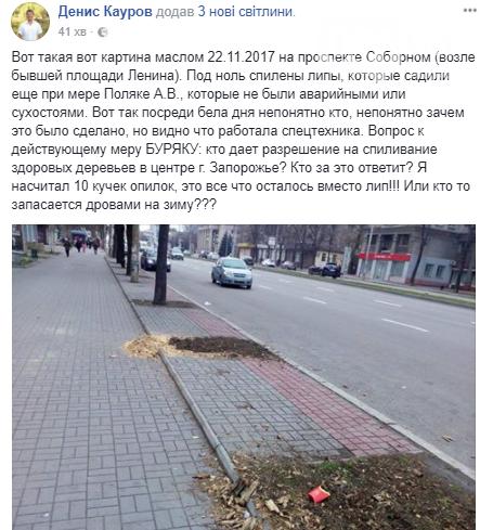 В Запорожье на проспекте спилили липы, посаженные при Поляке, - ФОТО, фото-3