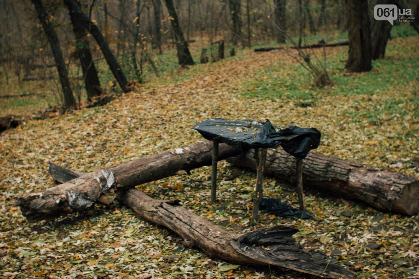 Четыре дня до зимы: как выглядит Хортица поздней осенью, - ФОТОРЕПОРТАЖ, фото-16