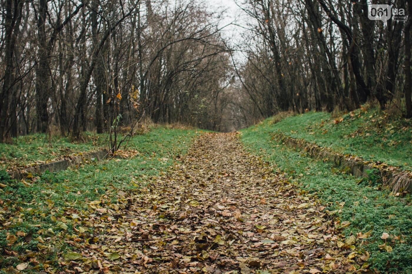 Четыре дня до зимы: как выглядит Хортица поздней осенью, - ФОТОРЕПОРТАЖ, фото-35