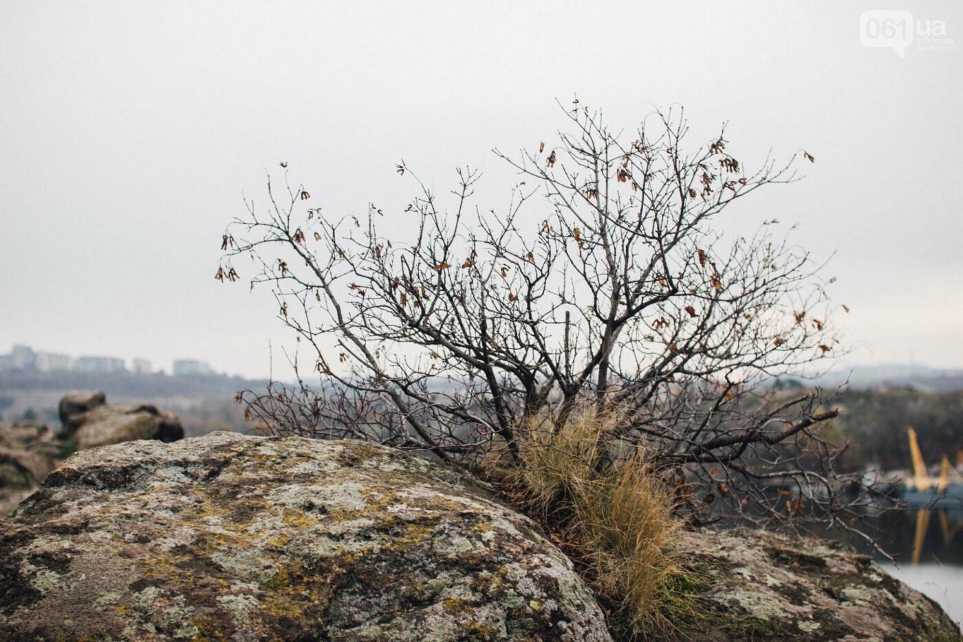 Четыре дня до зимы: как выглядит Хортица поздней осенью, - ФОТОРЕПОРТАЖ, фото-24