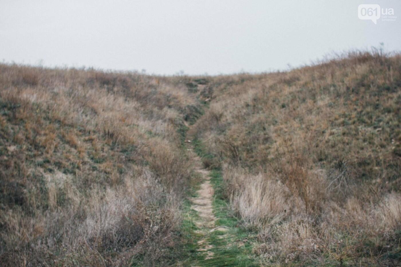 Четыре дня до зимы: как выглядит Хортица поздней осенью, - ФОТОРЕПОРТАЖ, фото-10