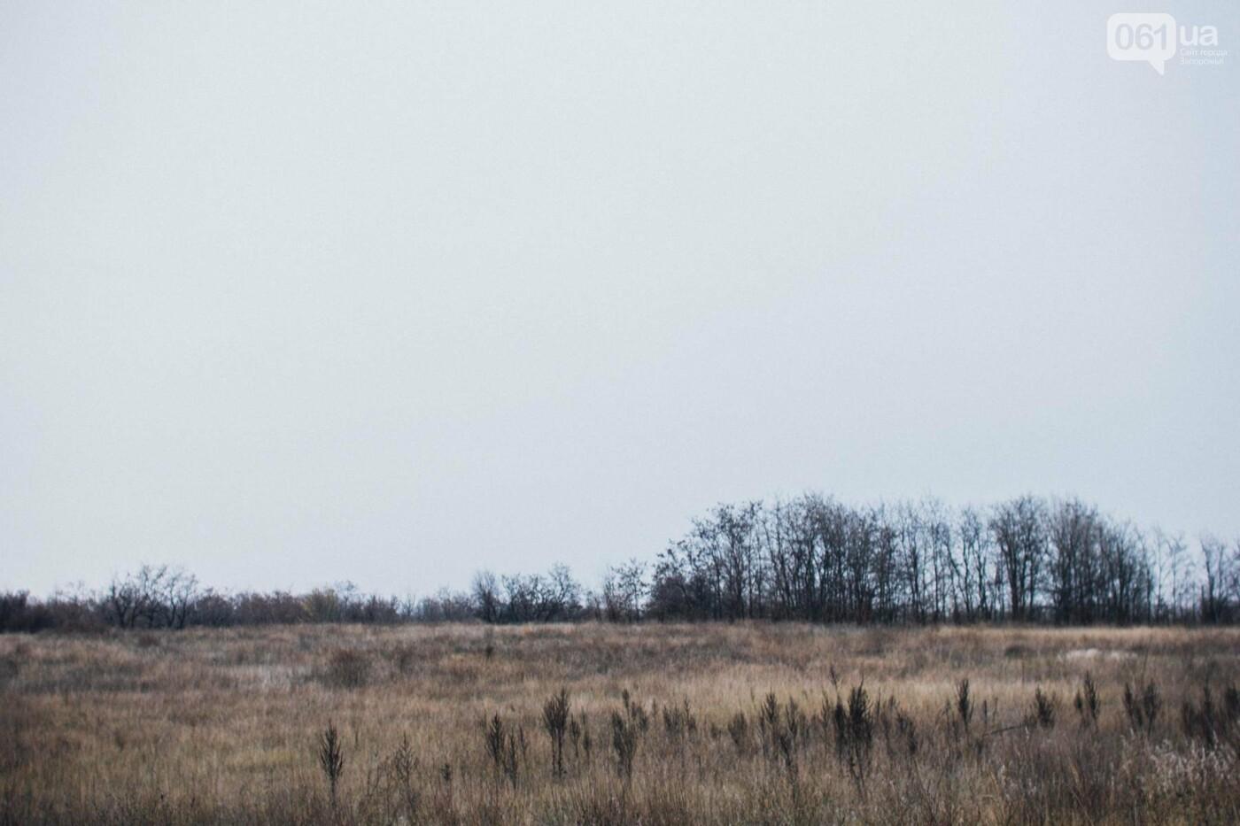 Четыре дня до зимы: как выглядит Хортица поздней осенью, - ФОТОРЕПОРТАЖ, фото-7