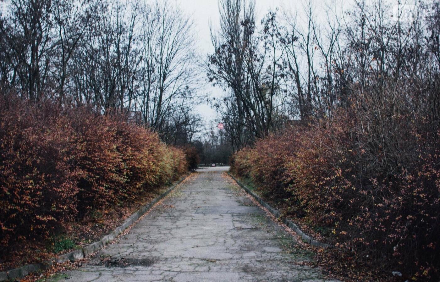 Четыре дня до зимы: как выглядит Хортица поздней осенью, - ФОТОРЕПОРТАЖ, фото-28