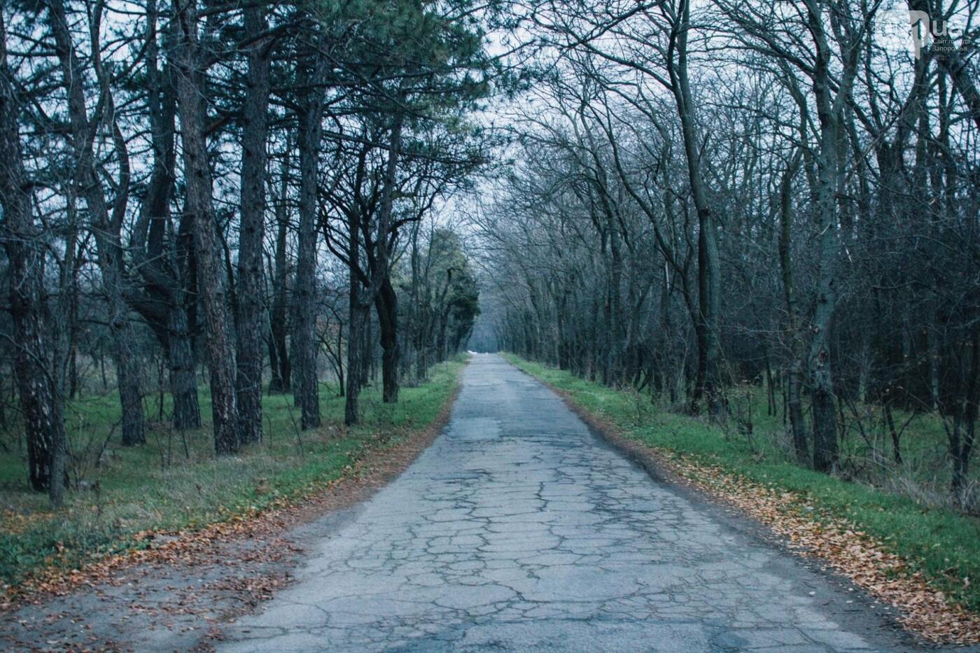 Четыре дня до зимы: как выглядит Хортица поздней осенью, - ФОТОРЕПОРТАЖ, фото-39