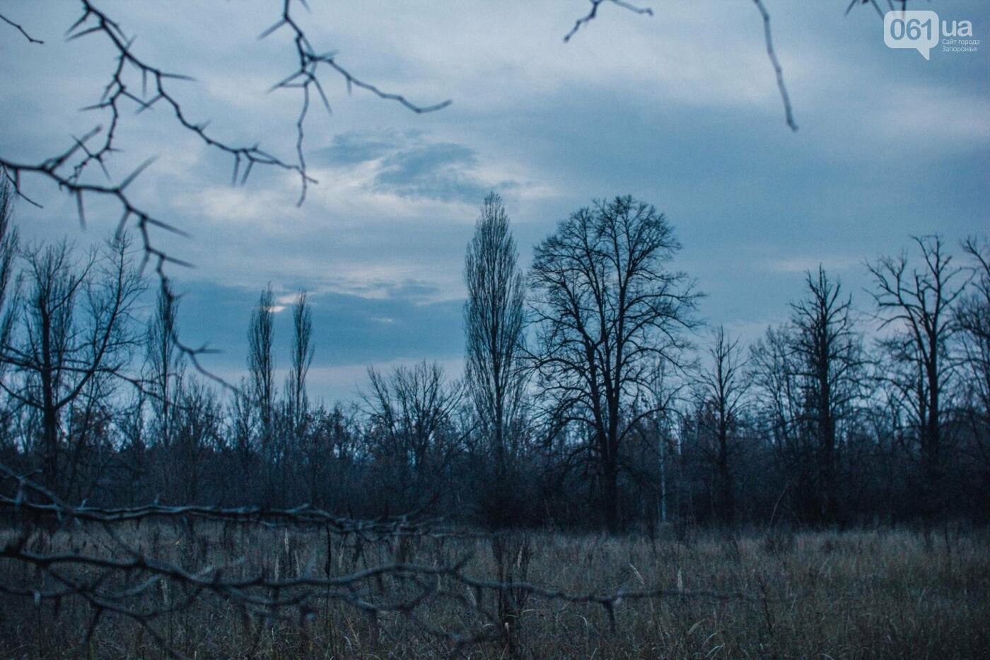 Четыре дня до зимы: как выглядит Хортица поздней осенью, - ФОТОРЕПОРТАЖ, фото-20