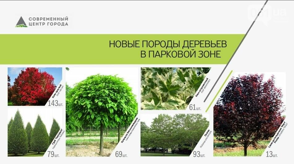 В Запорожье за три года появится новый ТРЦ и современный парк, фото-6