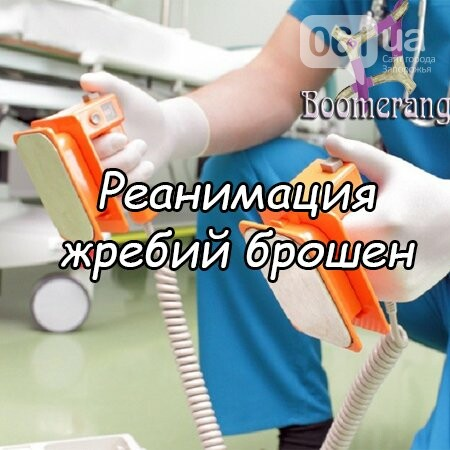 Лучшие квесты Запорожья, фото-2