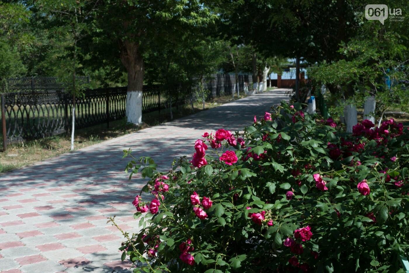 Где отдохнуть на море этим летом: обзор жилья и цен на украинских курортах , фото-2
