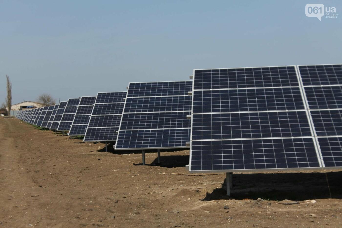 В запорожской громаде на месте свалки построили солнечную электростанцию: как она выглядит, – ФОТОРЕПОРТАЖ, фото-1