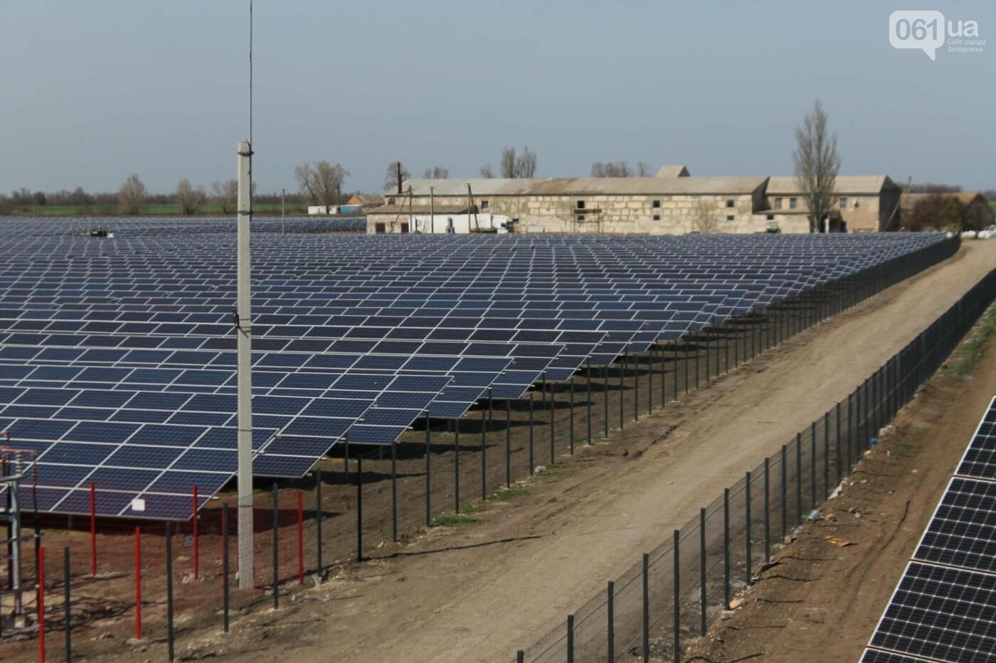 В запорожской громаде на месте свалки построили солнечную электростанцию: как она выглядит, – ФОТОРЕПОРТАЖ, фото-4