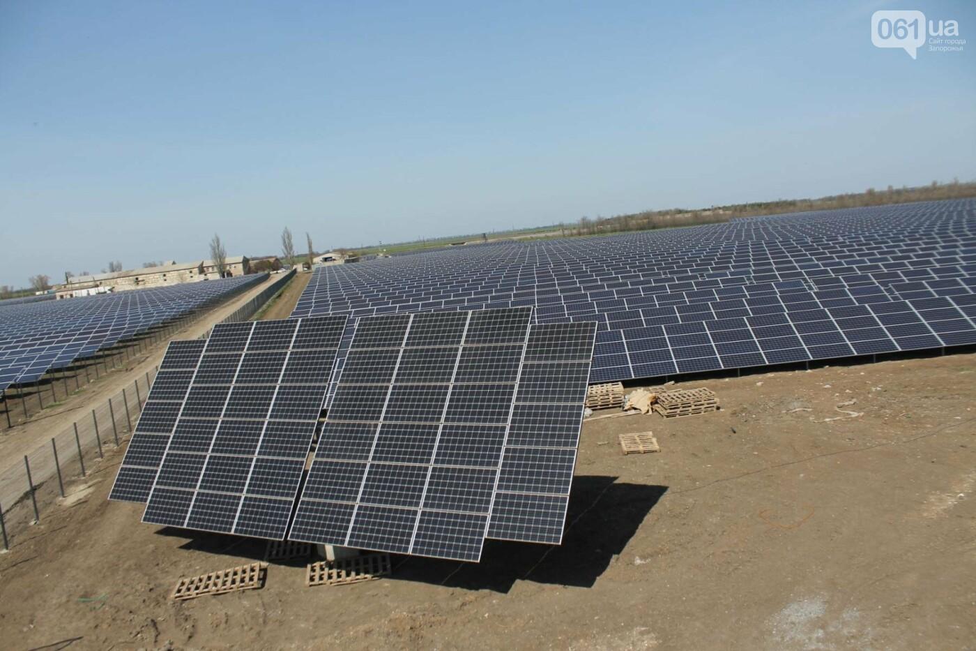 В запорожской громаде на месте свалки построили солнечную электростанцию: как она выглядит, – ФОТОРЕПОРТАЖ, фото-9