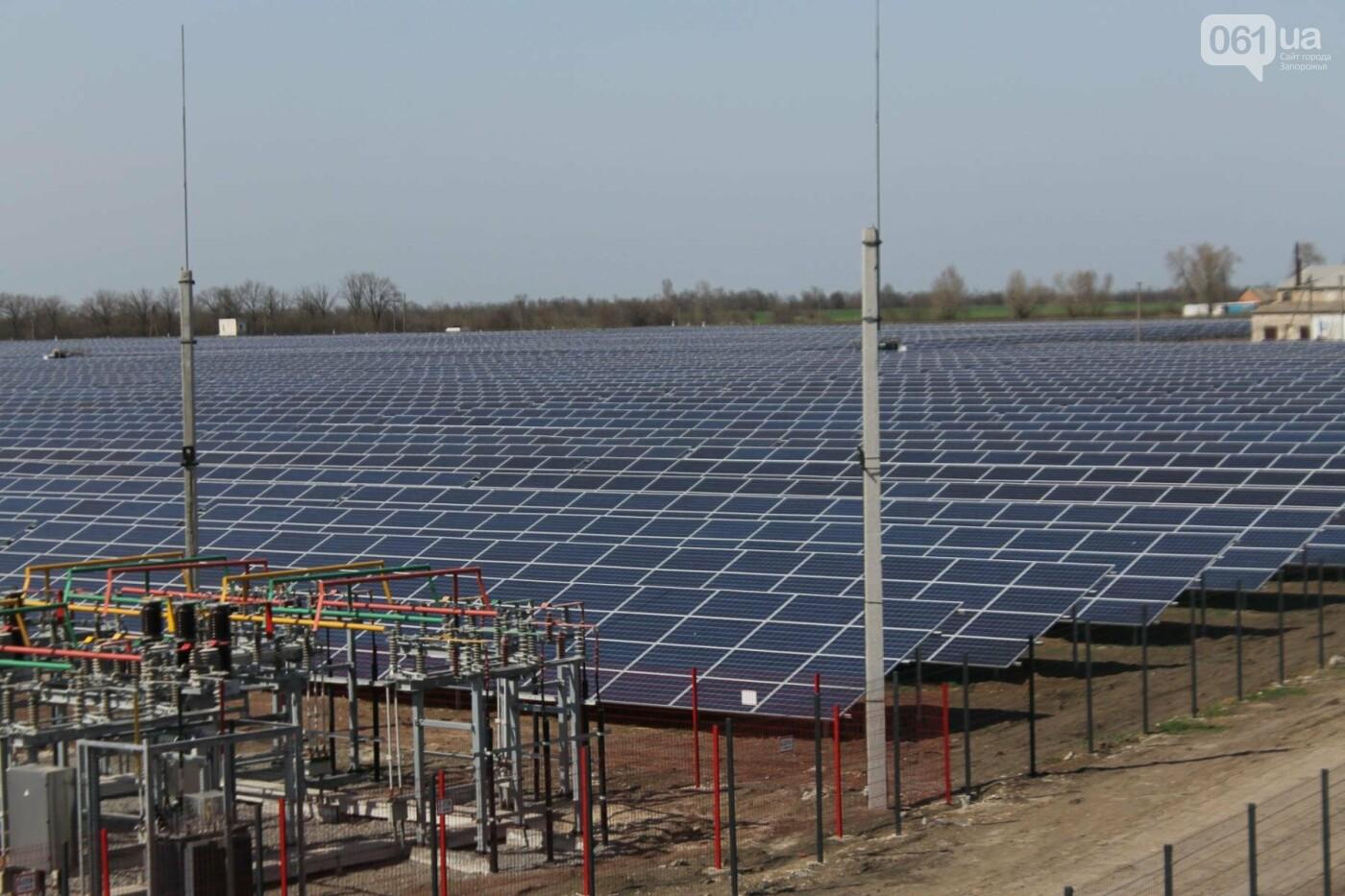 В запорожской громаде на месте свалки построили солнечную электростанцию: как она выглядит, – ФОТОРЕПОРТАЖ, фото-8