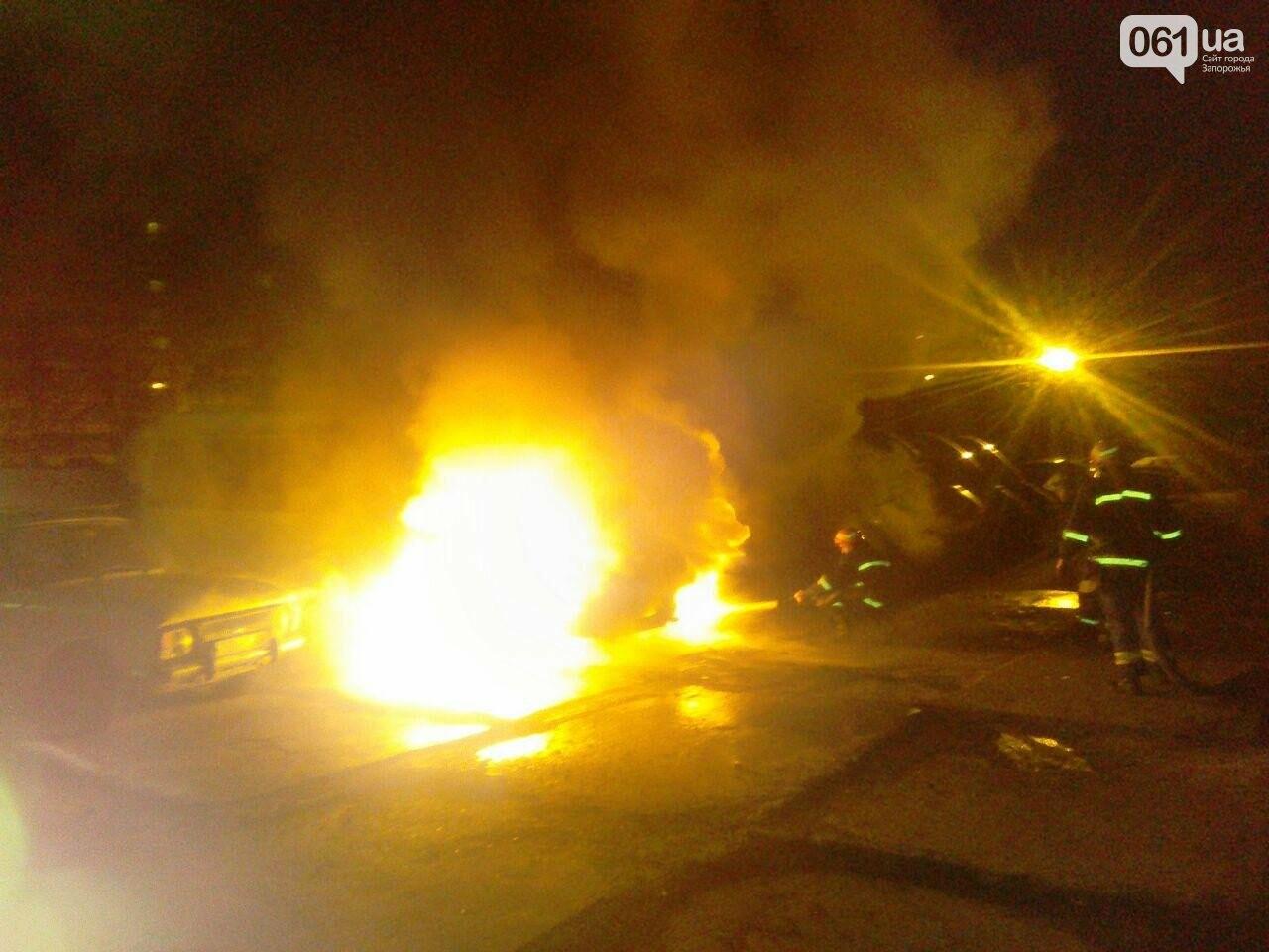 """""""Это была акция устрашения"""": в Запорожской области неизвестные подожгли три автобуса компании """"БасТур"""", фото-2"""